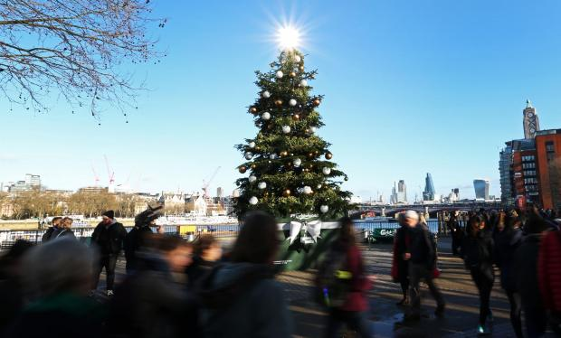 This Is Local London: Carlsberg's Christmas tree that gave out free beer