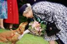 The Queen is known for her affection for dogs (PA)