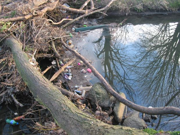 Kingston's Hogsmill is one of the natural beauty spots of the borough