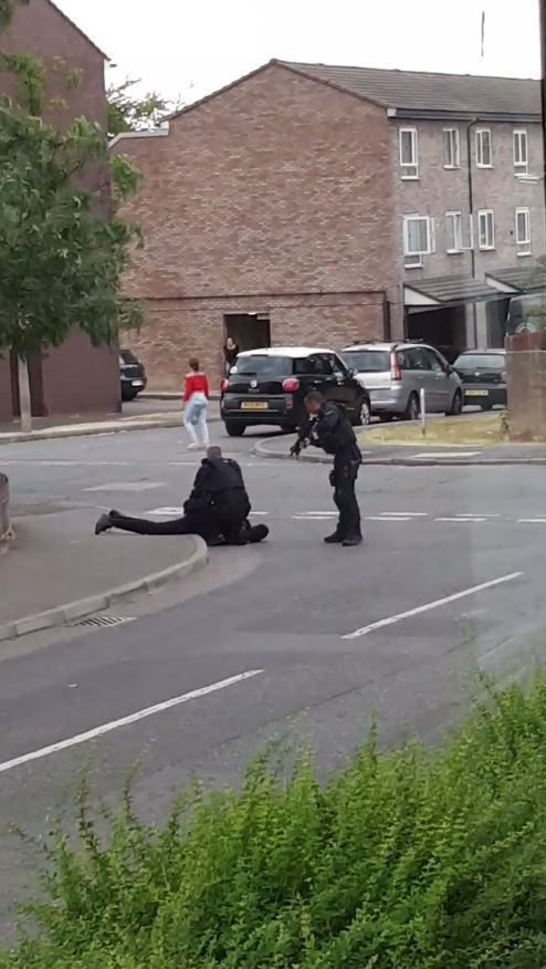 A man was pictured being arrested by armed officers in Daimler Way, near to Redford Avenue, on July 9.