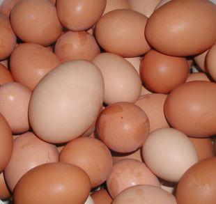 This Is Local London: Shopkeepers ban youngsters from buying eggs