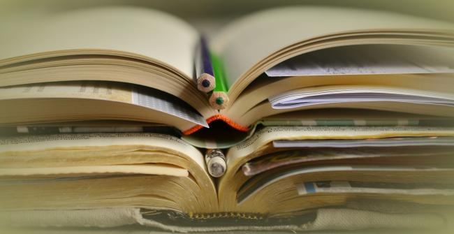 People may have books that became overdue during the coronavirus pandemic (Photo: Pixabay)