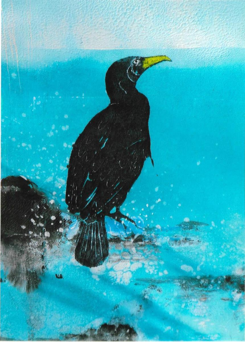 Eye-catcher: Cormorant by Frances Geraghty